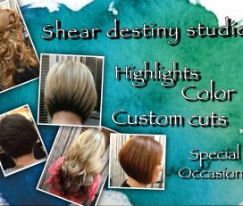 Shear Destiny Studio at Salon Boutique featuring Michelle