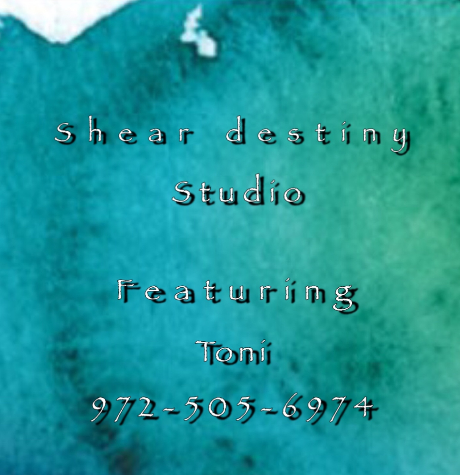 Shear Destiny Studio at Salon Boutique featuring Toni